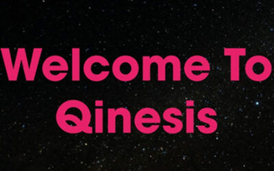 The new & improved Qinesis, The Business Growth Company